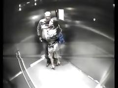 Catfight-Club sex in elevator tube porn video