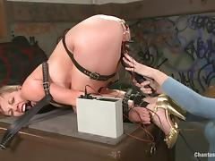 electro bdsm for adrianna nicole tube porn video