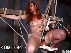 Babe in a Wooden Box tube porn video