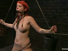 Sloane Soleil gets humiliated and toyed by her master tube porn video