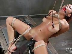 serena ali gets tied up and exploited tube porn video