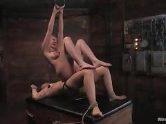 Poor Savannah West gets tied up and toyed in a basement tube porn video