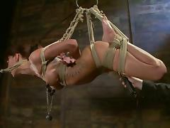 Tied up Gia Dimarco gets distressful and toyed almost both holes tube porn video