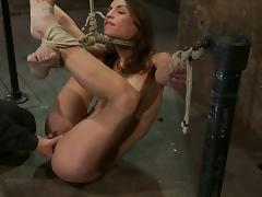 Hog tied Amber Rayne gets toyed with a dildo and a vibrator tube porn video